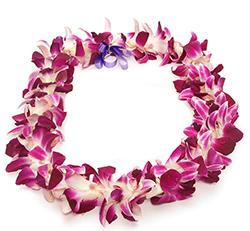 """Résultat de recherche d'images pour """"hawaiian lei"""""""